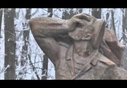 Новости Новочеркасска за 16 февраля 2015 года